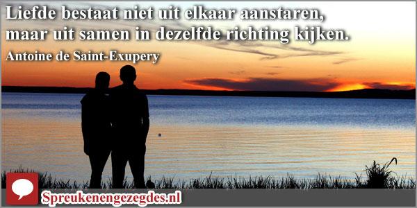 Liefde bestaat niet uit elkaar aanstaren, maar uit samen in dezelfde richting kijken. Antoine de Saint-Exupery