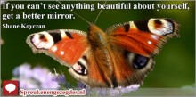 If you can't see anything beautiful about yourself, get a better mirror. Shane Koyczan