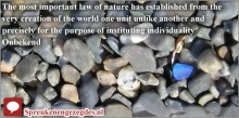 The most important law of nature has established from the very creation of the world one unit unlike another and precisely for the purpose of instituting individuality.
