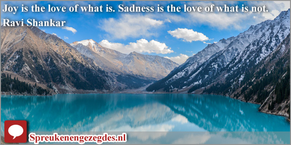 Joy is the love of what is. Sadness is the love of what is not. Ravi Shankar