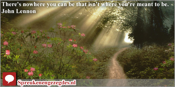 There's nowhere you can be that isn't where you're meant to be.