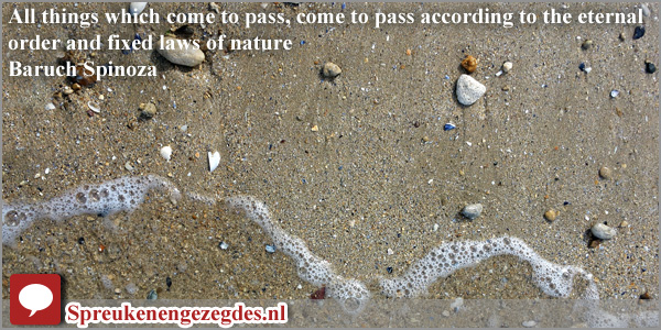 All things which come to pass, come to pass according to the eternal order and fixed laws of nature