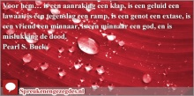 Voor hem… is een aanraking een klap, is een geluid een lawaai, is een tegenslag een ramp, is een genot een extase, is een vriend een minnaar, is een minnaar een god, en is mislukking de dood. Pearl S. Buck