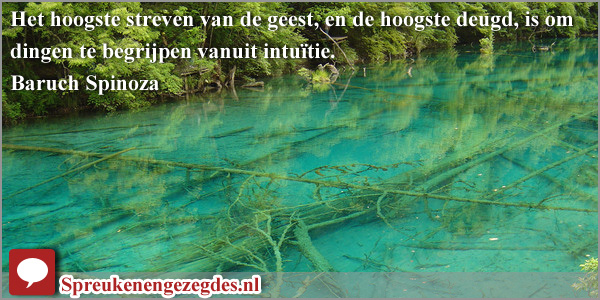 Het hoogste streven van de geest, en de hoogste deugd, is om dingen te begrijpen vanuit intuïtie. Baruch Spinoza