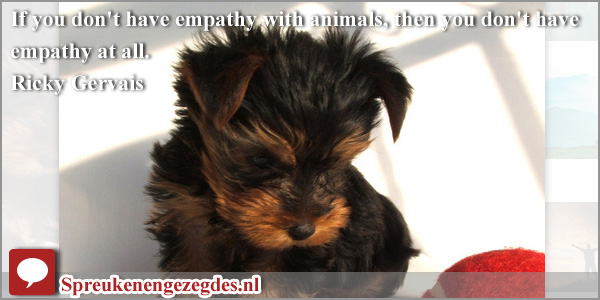 If you don't have empathy with animals, then you don't have empathy at all.