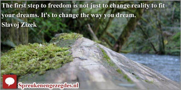 The first step to freedom is not just to change reality to fit your dreams. It's to change the way you dream.