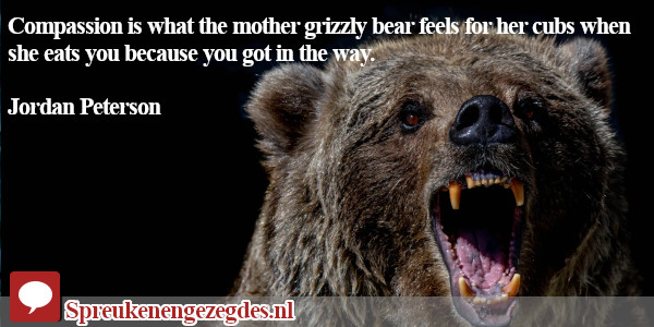 Compassion is what the mother grizzly bear feels for her cubs when she eats you because you got in the way. Jordan Peterson